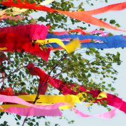 3-m-Maibaum geschmückt